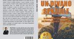 Fabio Salvadori, Un Divano Spaziale: Il Bestseller che rivela come fare impresa con successo in Italia
